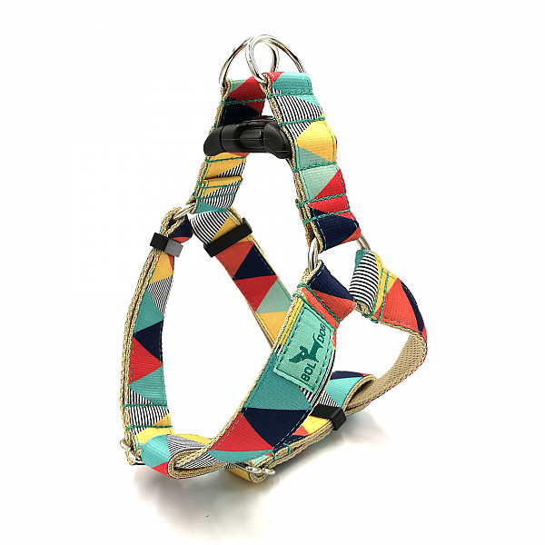 Zigzag boy dog harness
