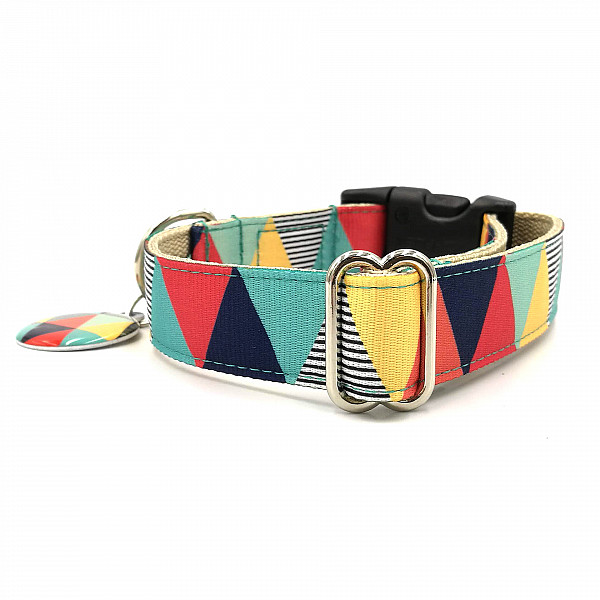 Zigzag boy dog collar
