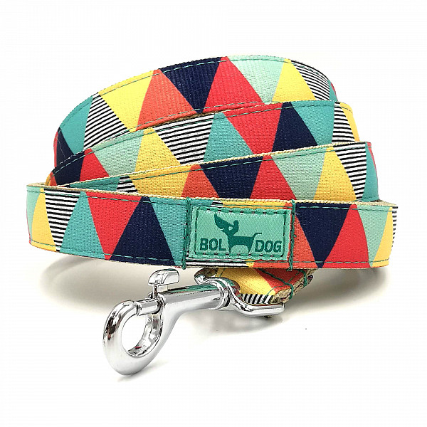 Zigzag boy dog leash