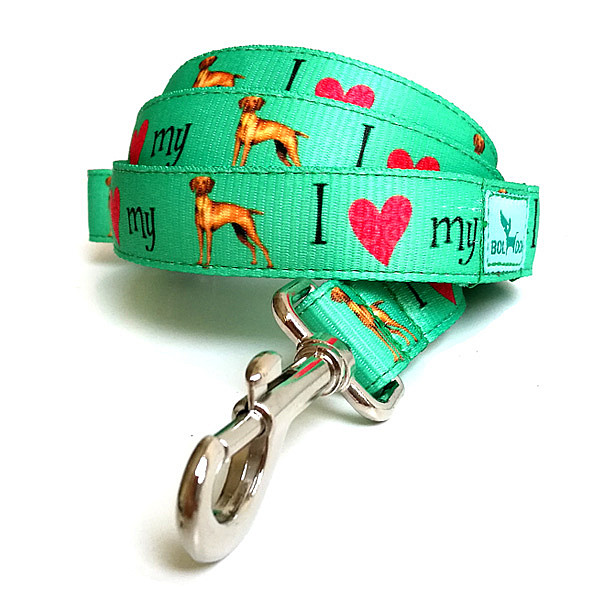 Love vizsla  leash