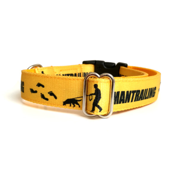 Mantrailing dog collar