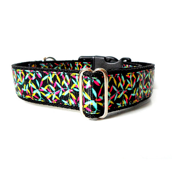 Path dog collar