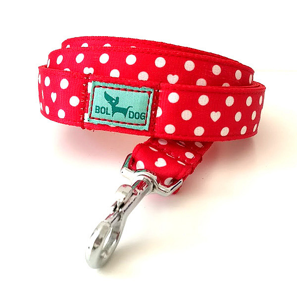 Red polka dots leash