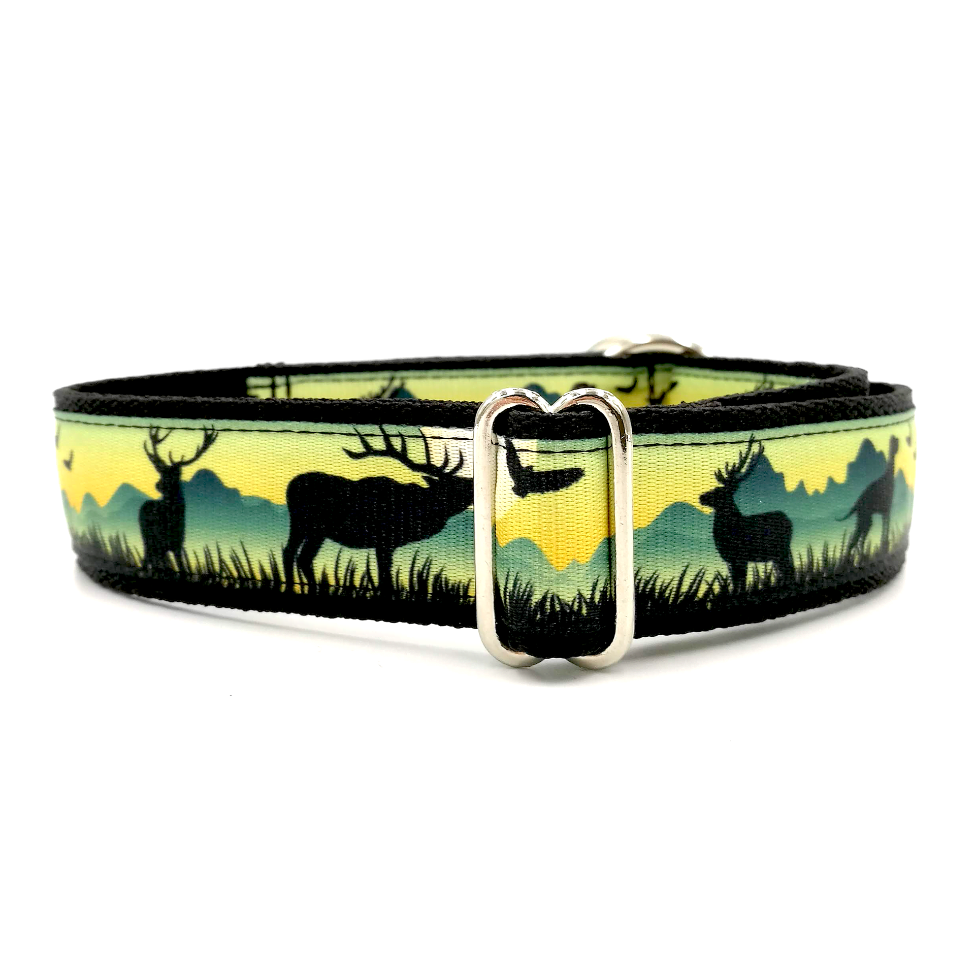 Hunter dog collar