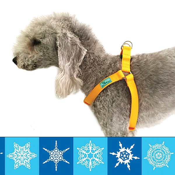 Snowflake dog harness