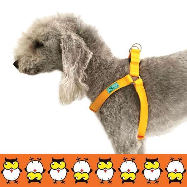 Bagoly mintás kutyahám