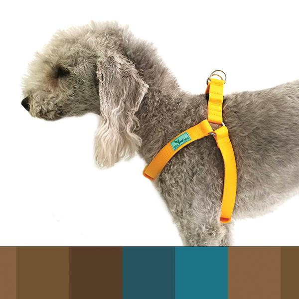 kék és barna csíkos kutyahám
