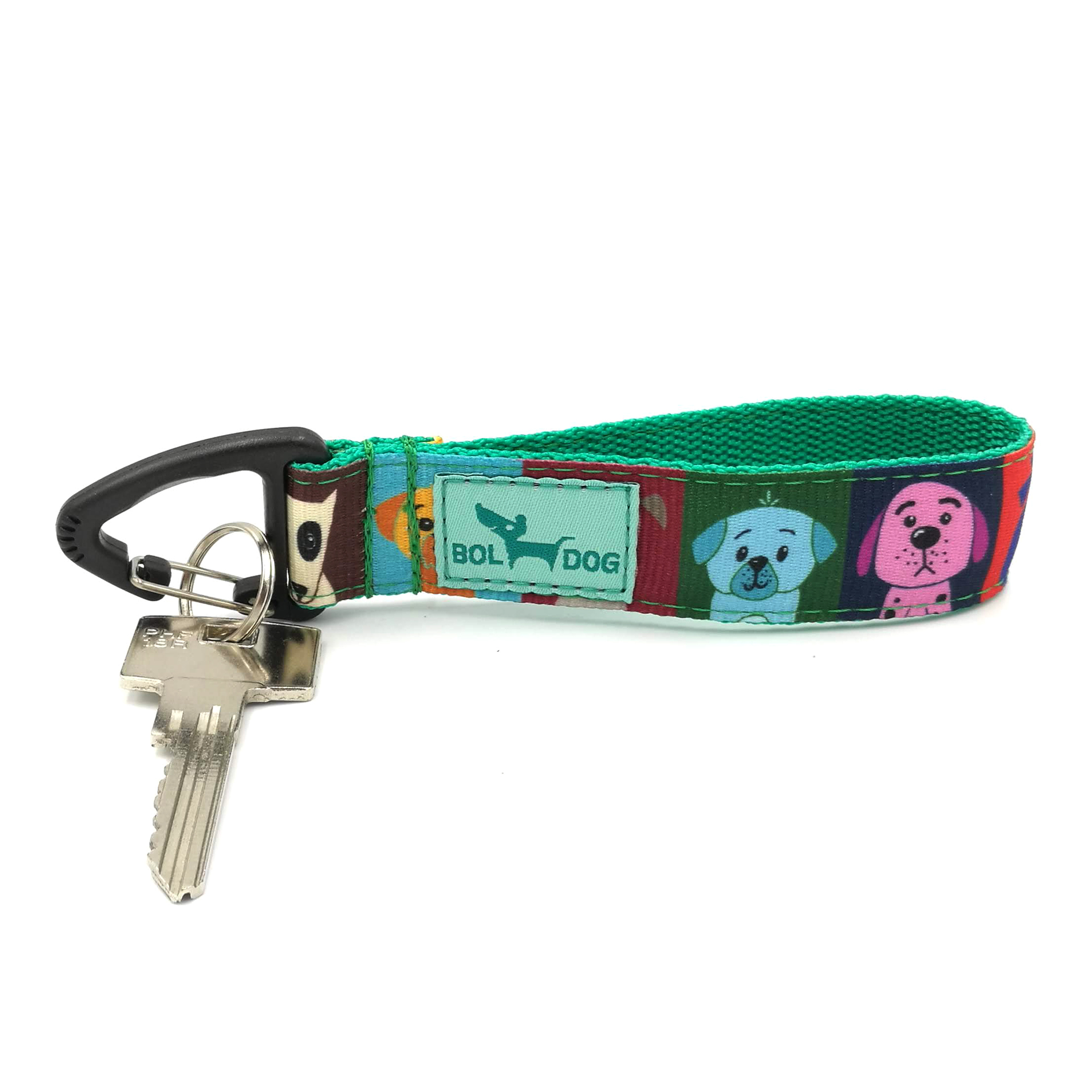 Dog school key holder