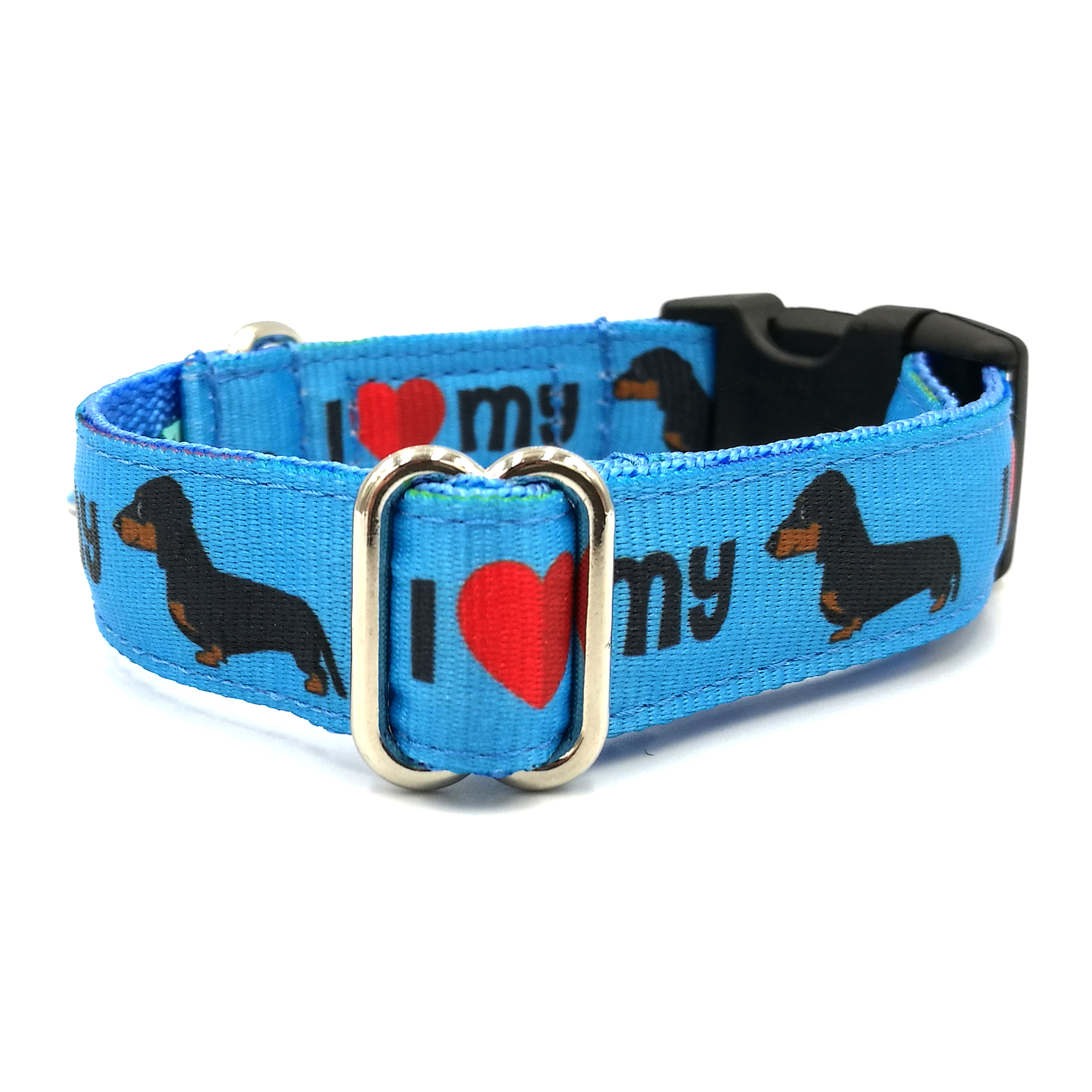 Dachshund blue dog collar