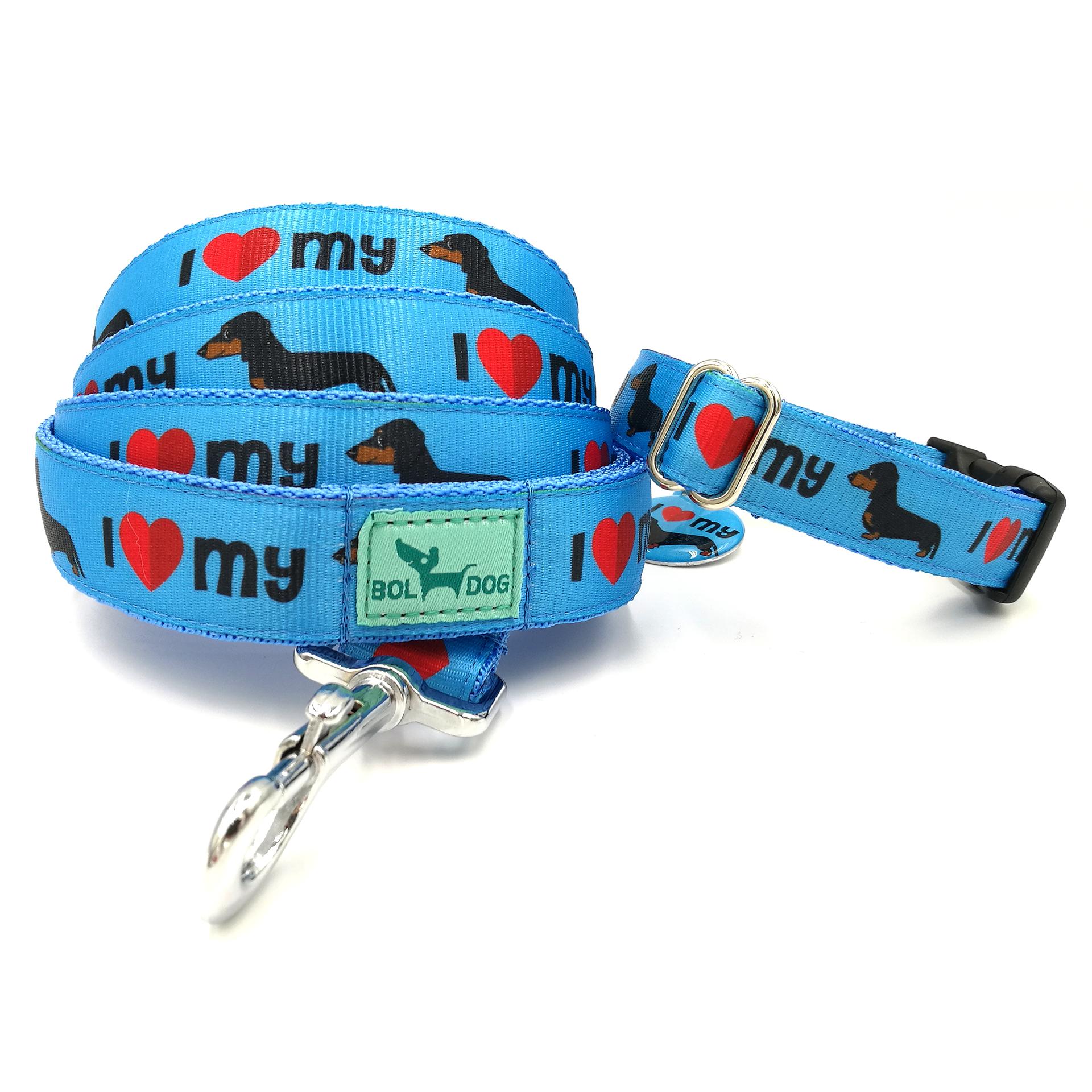 Blue Dachshund leash and collar