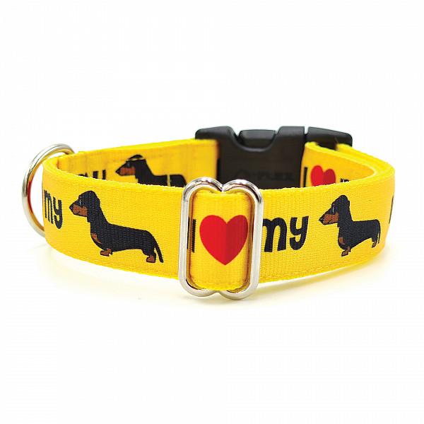 Dachshund yellow collar