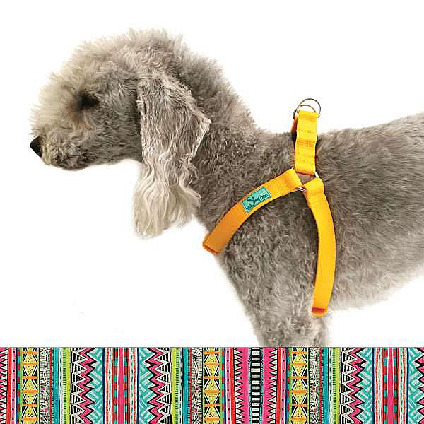Inca dog harness
