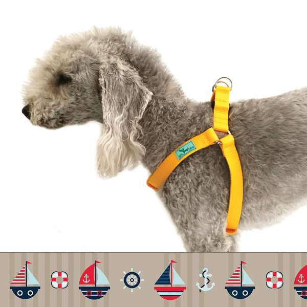 Raft dog harness