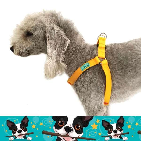 kutya mintás kutyahám kék