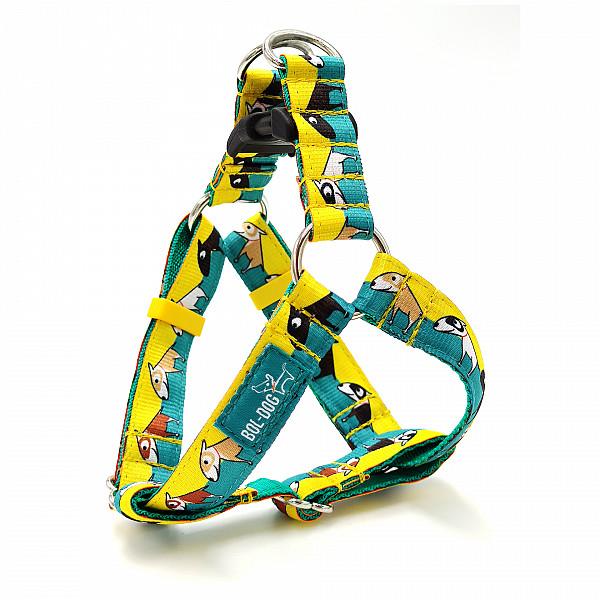Bull terrier harness