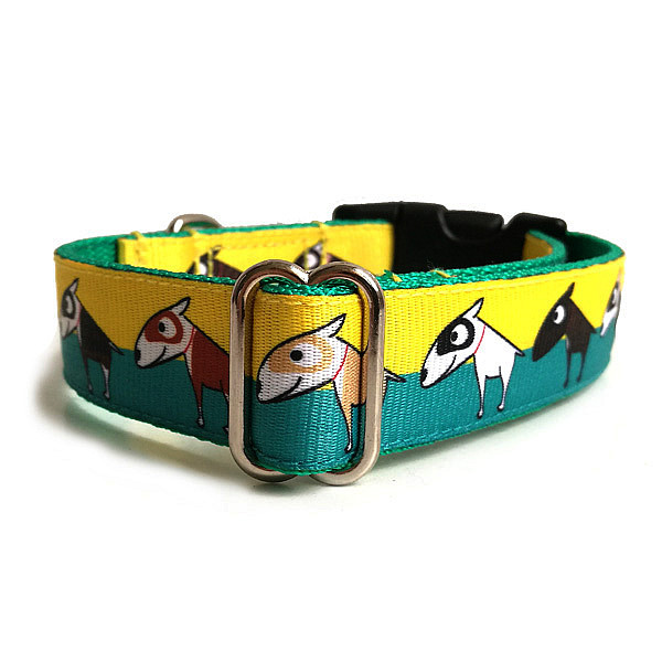 Bull terrier dog collar