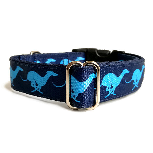 Tempest dog collar