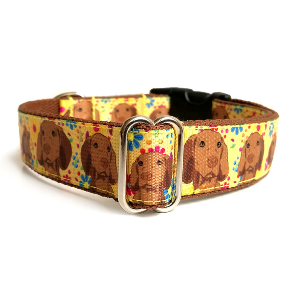 Vizsla dog collar