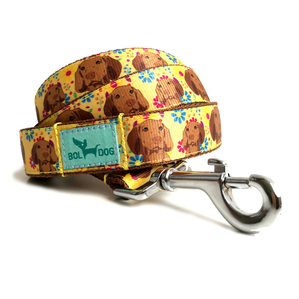 Vizsla dog leash