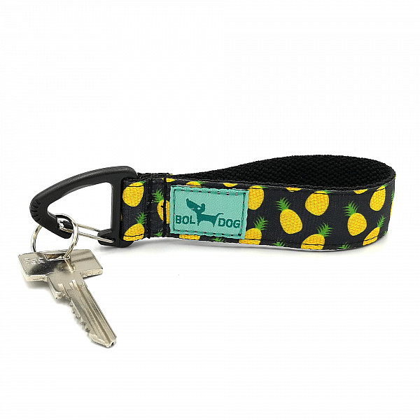 Ananas key holder