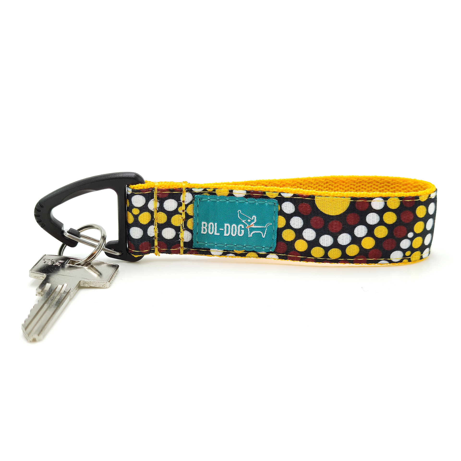 Ishihara key holder