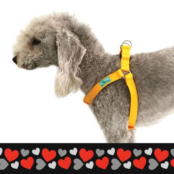 szív mintás kutyahám