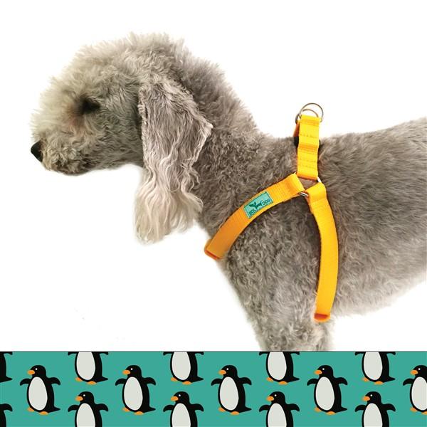 Penguin dog harness