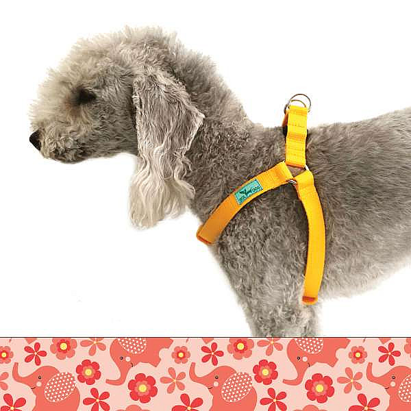 Elephant dog harness