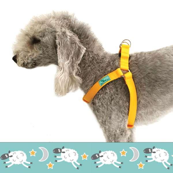 bárányos kutyahám
