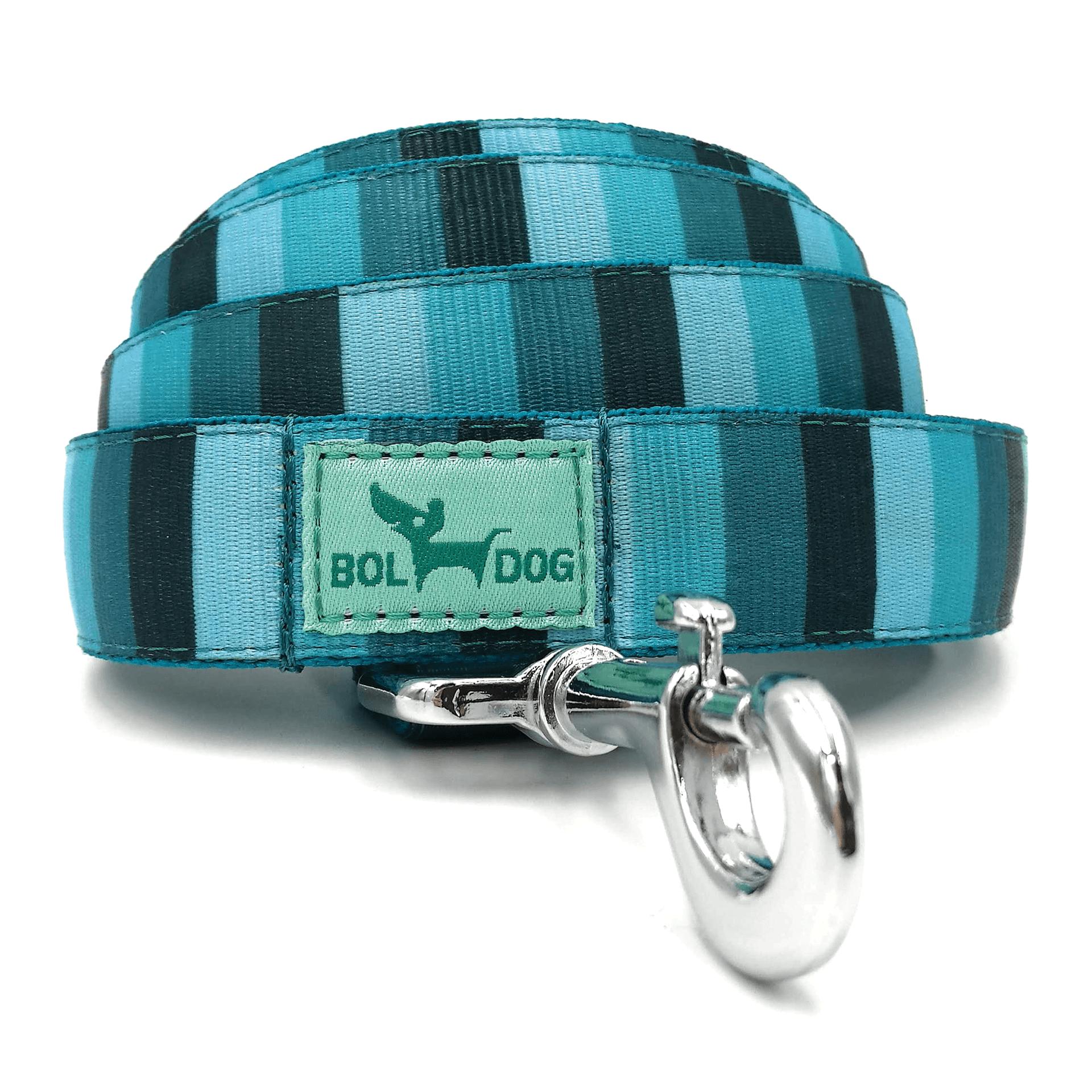 Blue striped dog leash