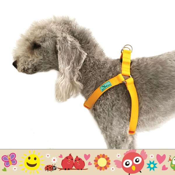 Madár, napocska, virág mintás kutyahám.