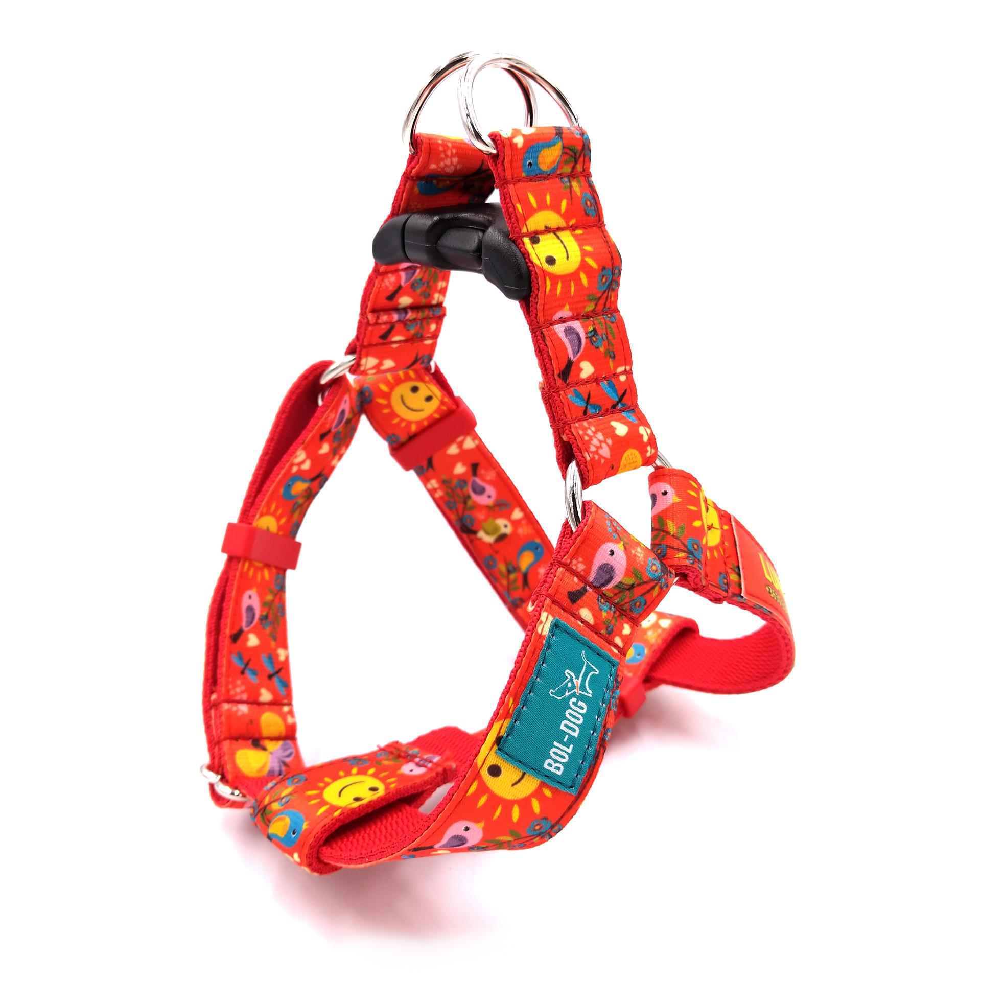 Spring dog harness