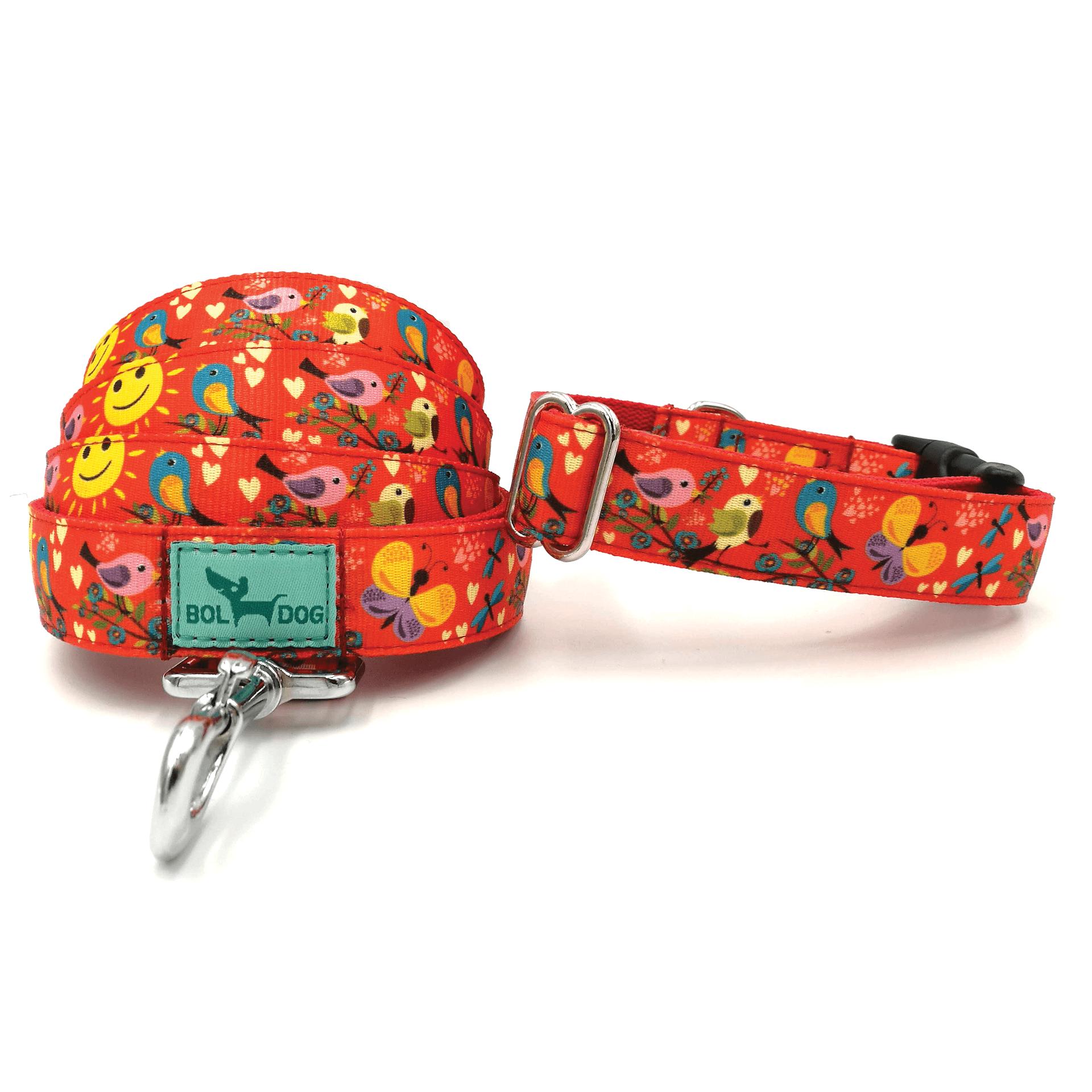 Madár mintás narancs színű kutya nyakörv és póráz
