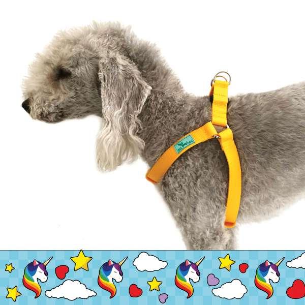 Unicorn blue dog harness