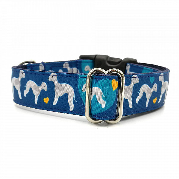 Bedlington dog collar
