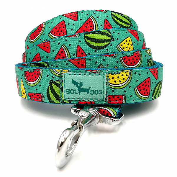 Melon dog leash