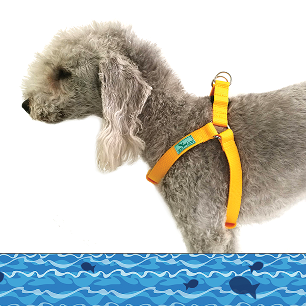 Fisherman dog harness