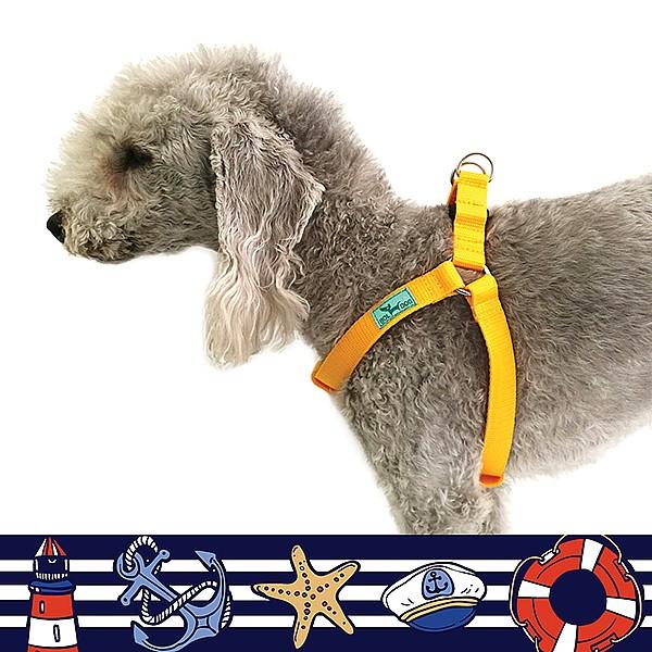 Tengerész kék kutyahám
