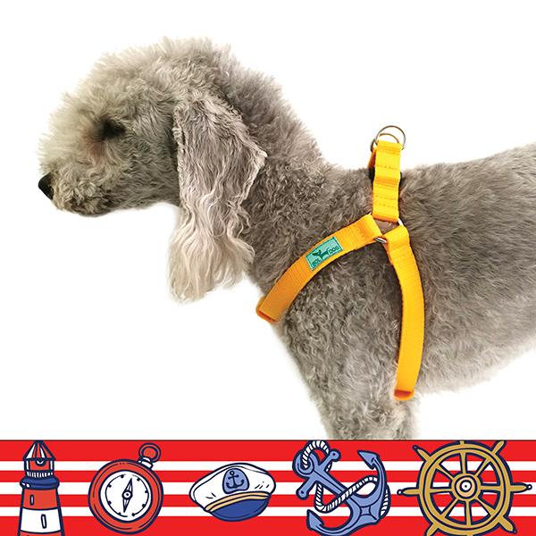 Marine red dog harness