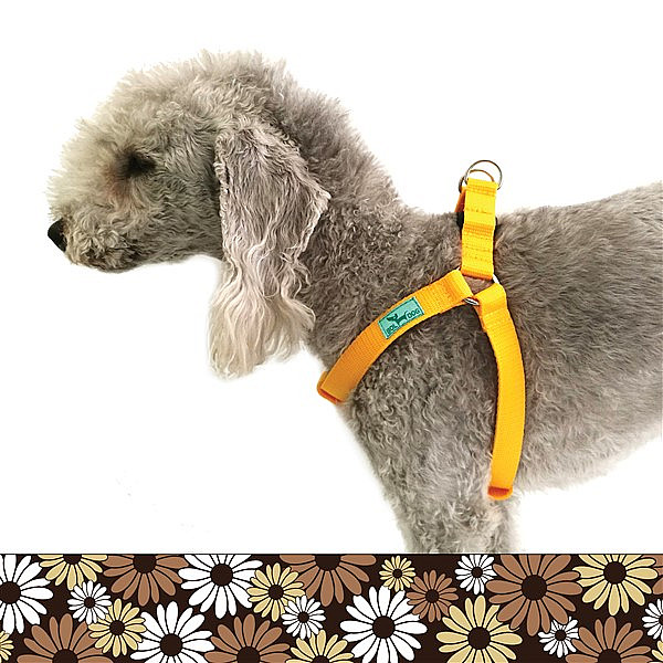 Explorer dog harness