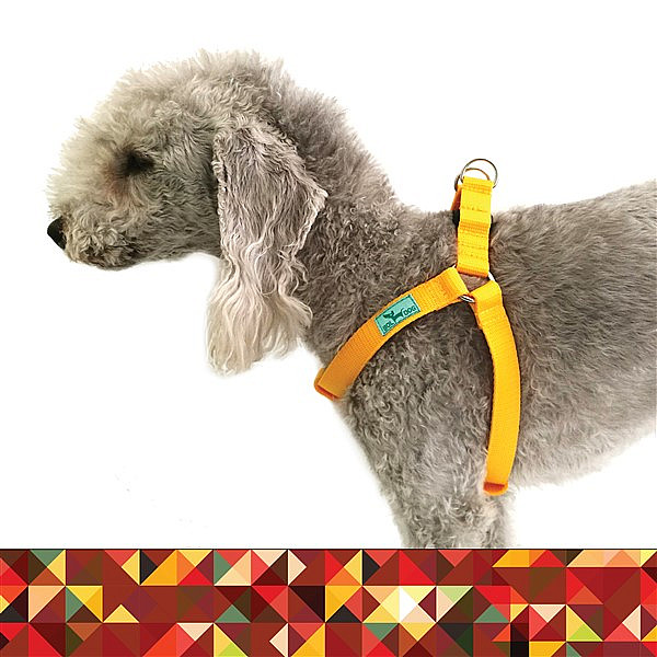 Shaggy dog harness