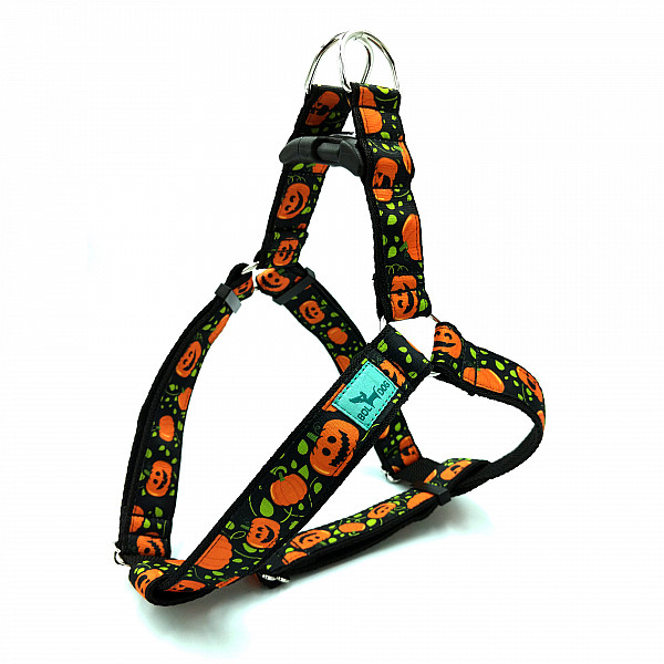 Pumpkin harness