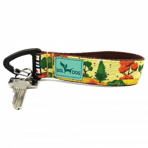 Hiking key holder