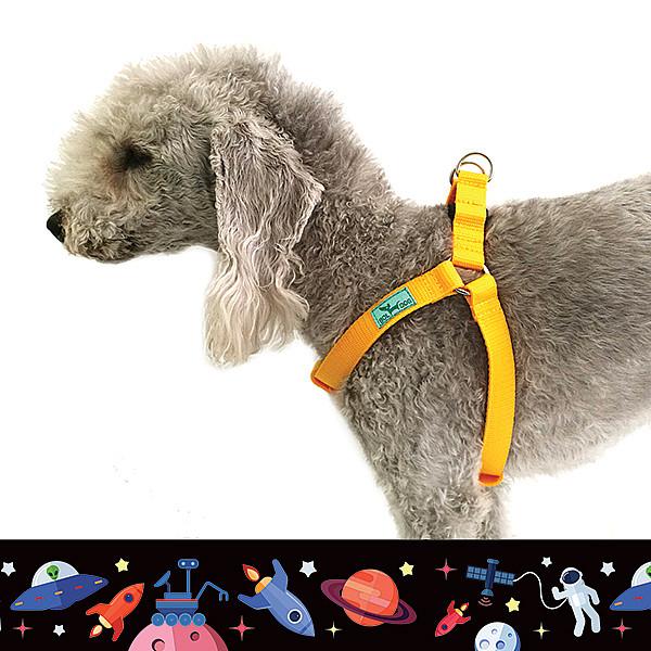 Űrhajós kutyahám