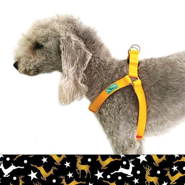 Comet dog harness