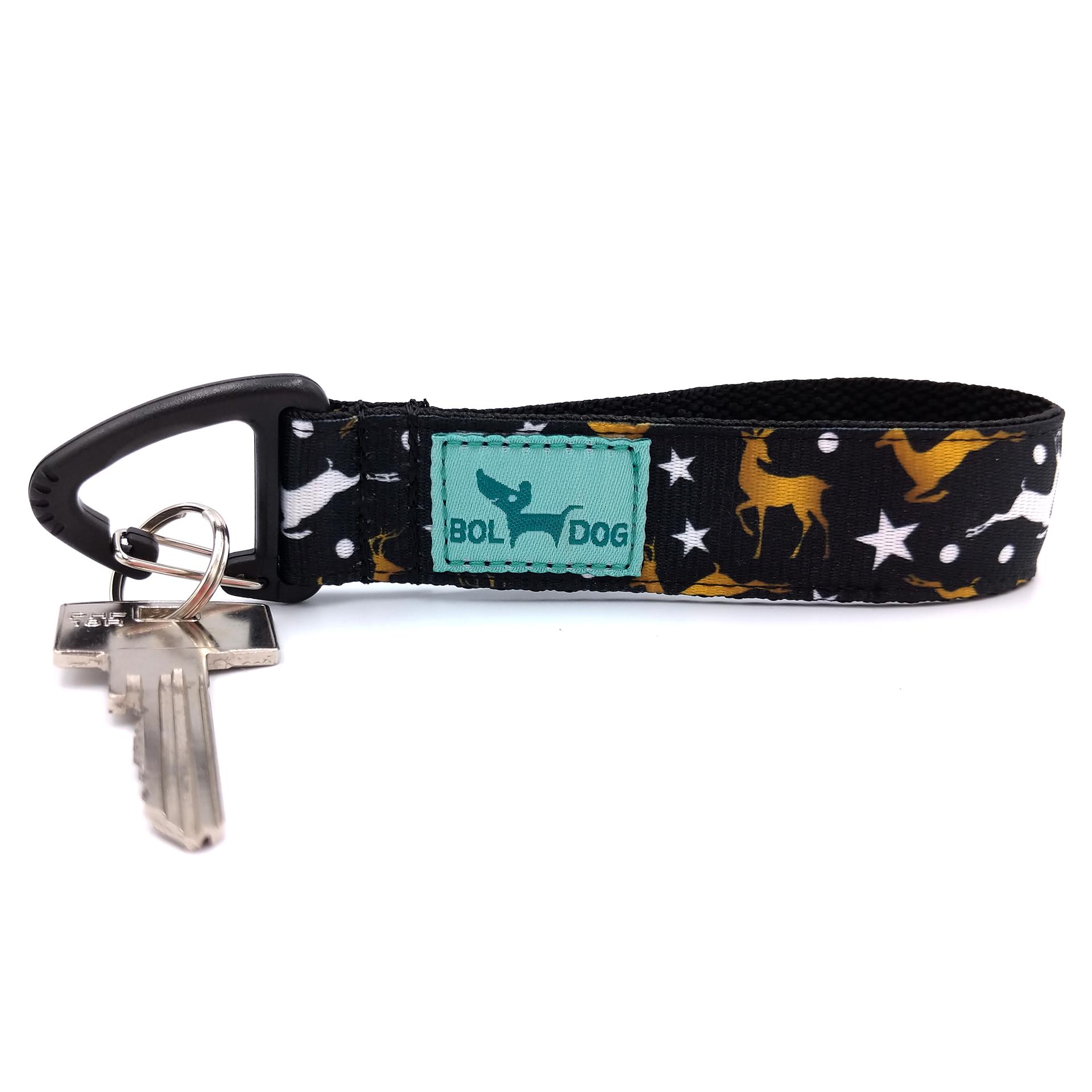 Comet key holder