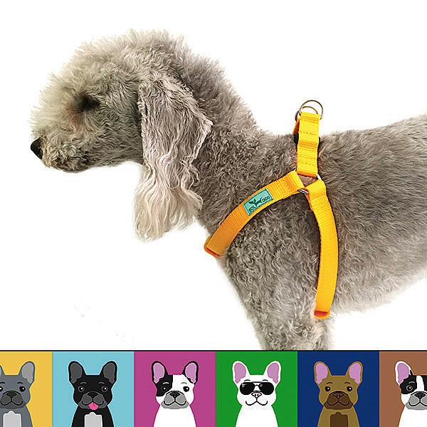 Bulldog love kutyahám