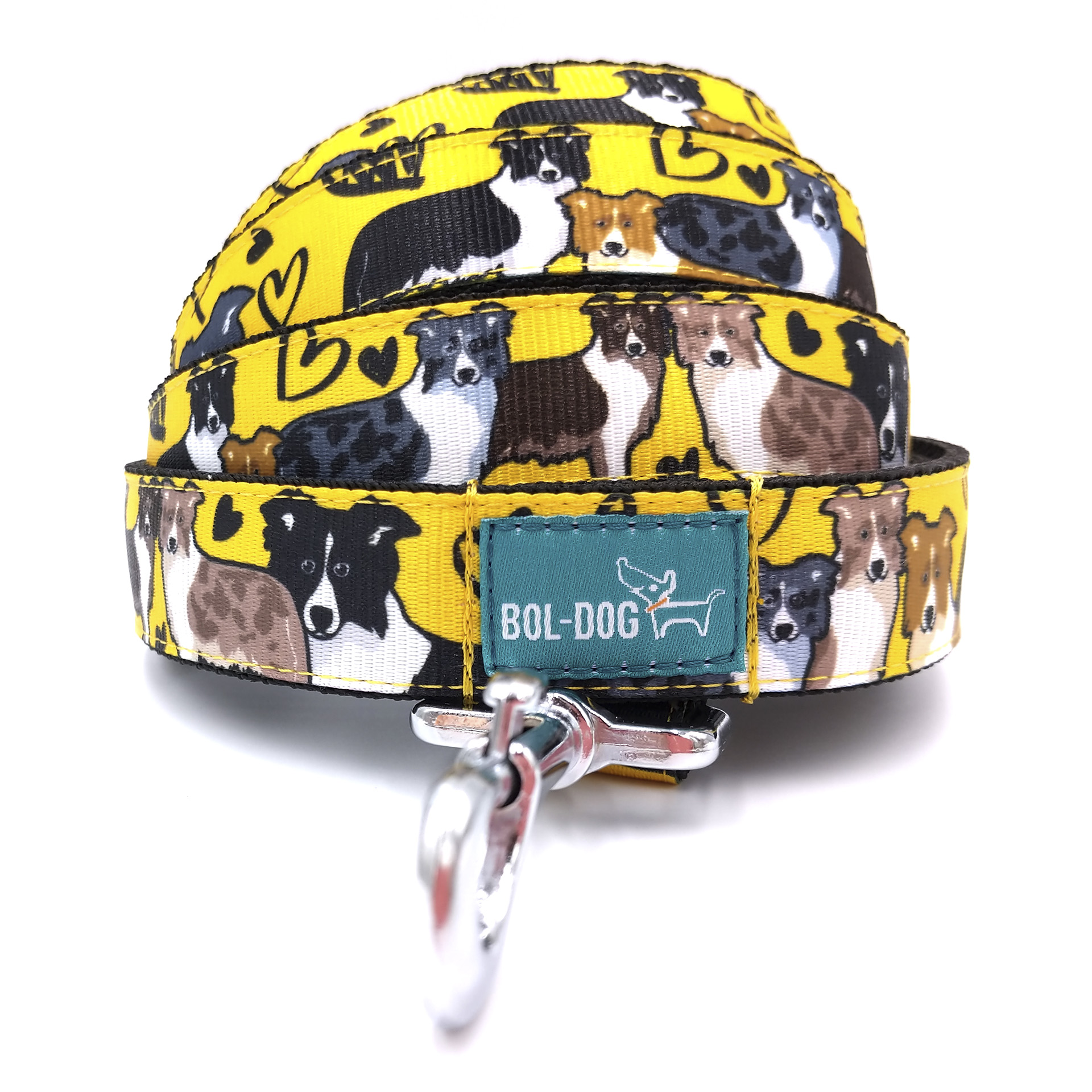 Collie love dog leash