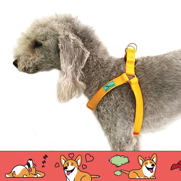 corgi mintás kutyahám