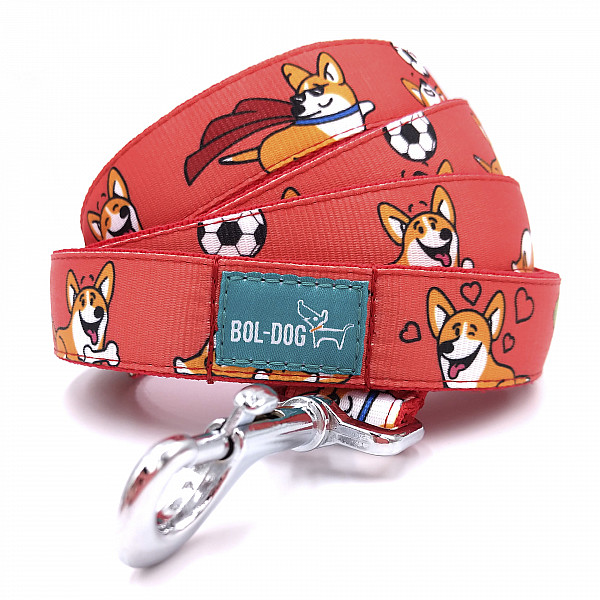 Corgi love leash